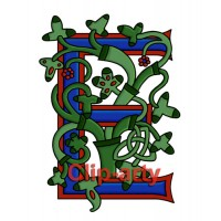 Celtic Tree of Life Capital E - Coloured